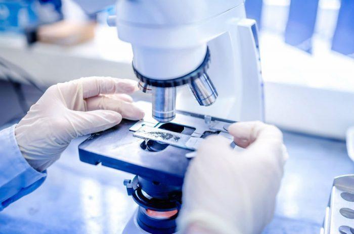 Проведение исследований под микроскопом