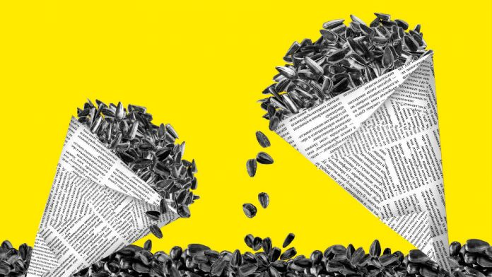 Семечки подсолнуха в стаканчике из газеты