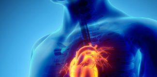 Здоров'я серця