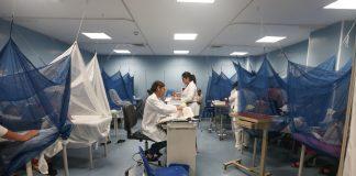 Эпидемия лихорадки денге в Латинской Америке