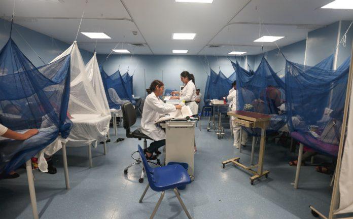 Епідемія лихоманки денге в Латинській Америці
