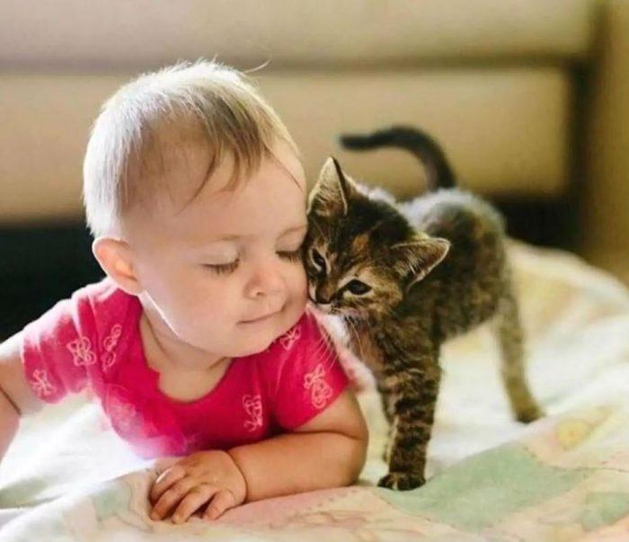 Ребенок с котенком