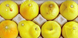 Лимоны и рак груди