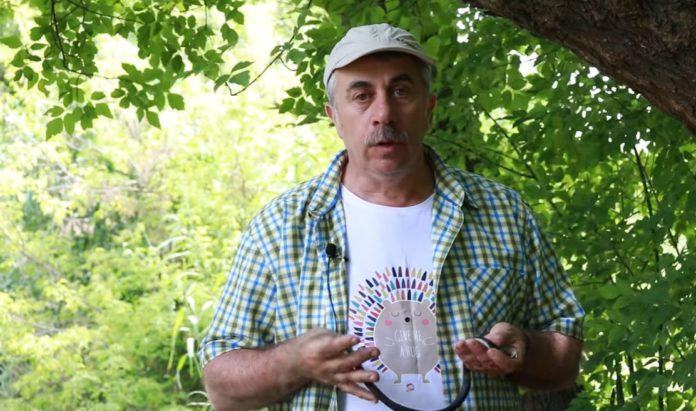 Євген Комаровський про змій