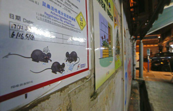 Предупреждение о яде для крыс на аллее в Гонконге