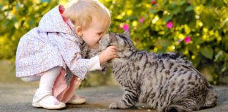Любов до тварин