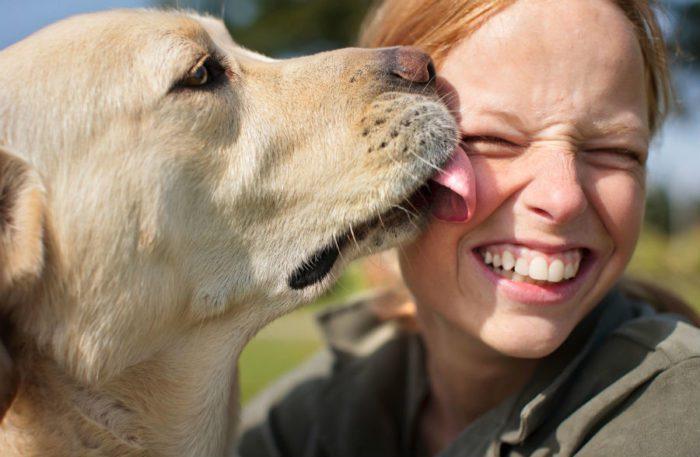 Собачьи поцелуи тоже лучше пресекать