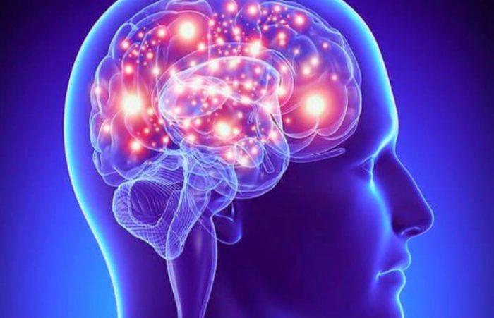 Эпилепсия относится к неврологическим проблемам