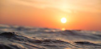 Кишечная палочка в воде