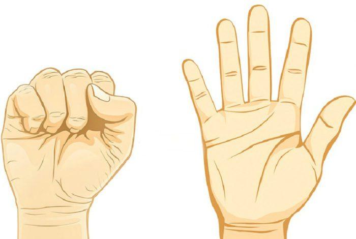 Тест «Кулачок»