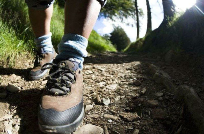 В походе на природу ноги должны быть закрыты