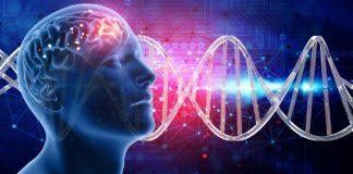 Гены ДНК