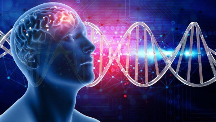Гени ДНК