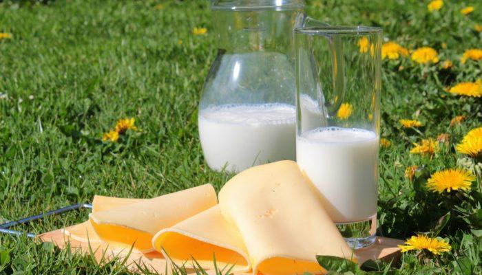 Сыр и молоко тоже не стоит сочетать с мясом