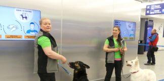 Перевірка собаками в аеропорту Гельсінкі