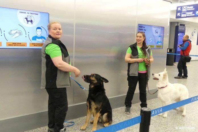 Проверка собаками в аэропорту Хельсинки