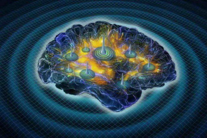 активність мозку