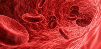 Густа кров